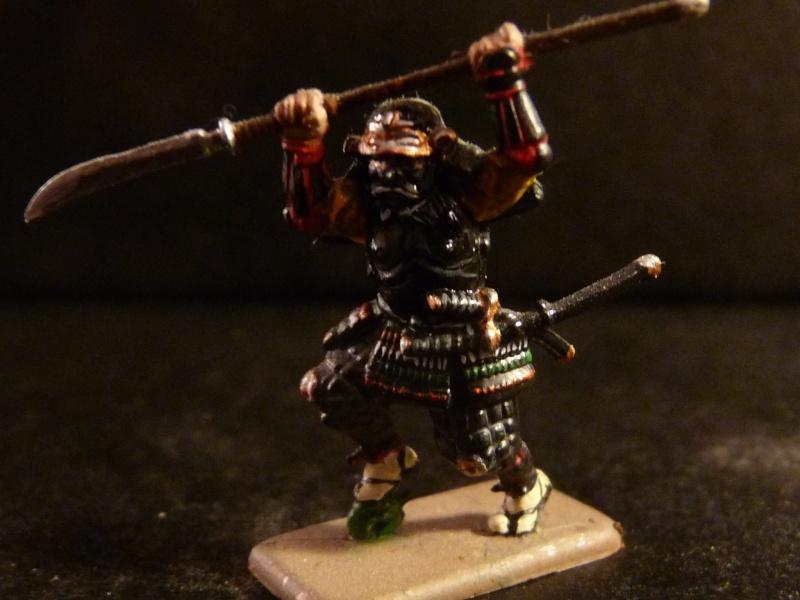 Samurai 1/72 - Sammelthema - P1040621