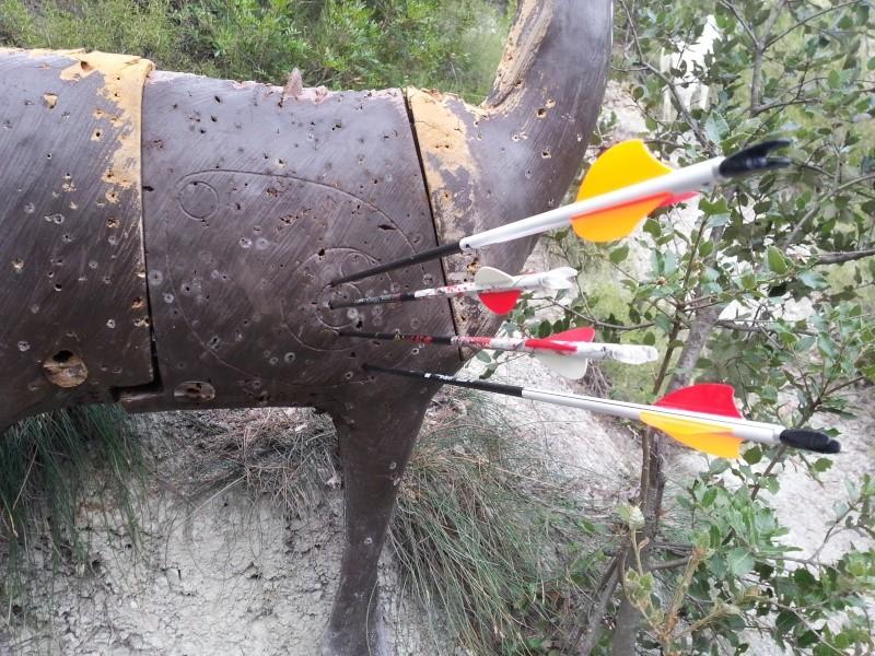 Aurel Archery : des flèches venues d'Allemagne 20130815