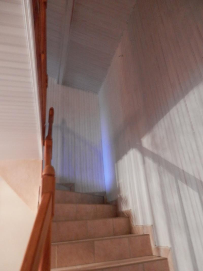 Harmonie salon/SAM/Cage escalier 2013-014