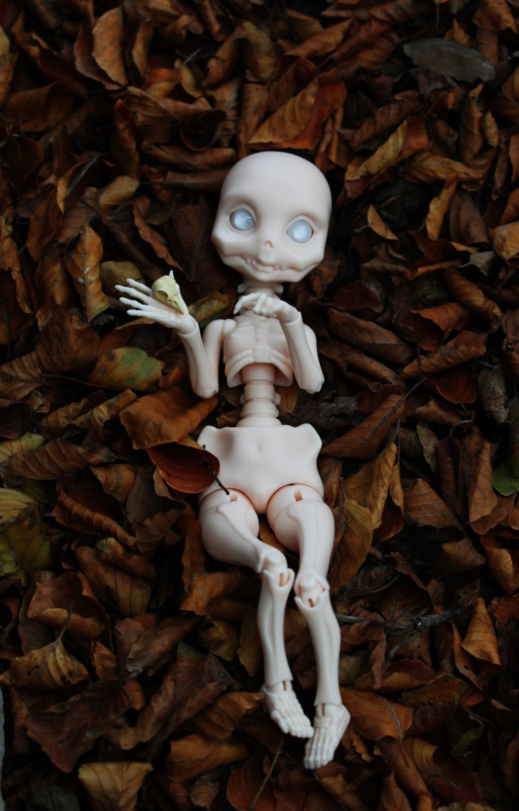VENDUE (Skully for sale) Img_9410