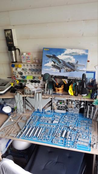 F-15C Agressor splinter camo 1/48 GWH 20190519