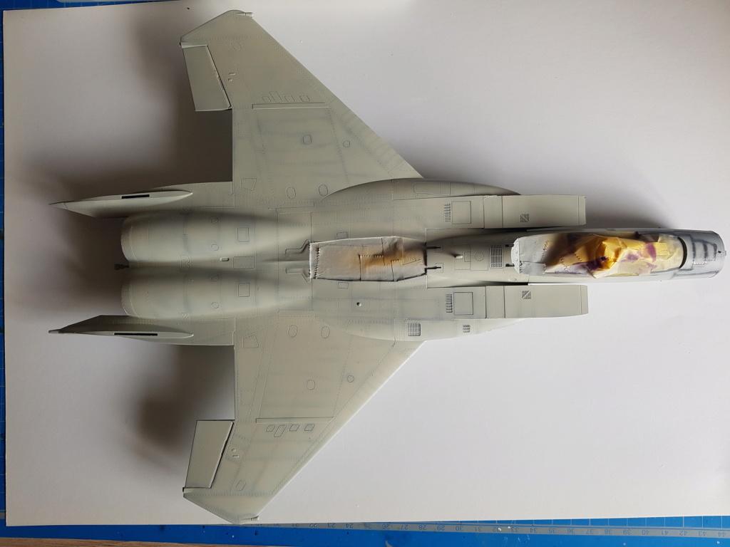 F-15C Agressor splinter camo 1/48 GWH - Page 3 20190731