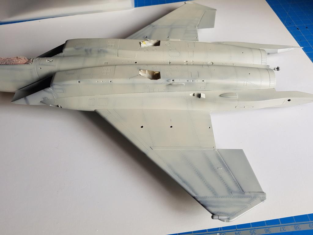 F-15C Agressor splinter camo 1/48 GWH - Page 3 20190734