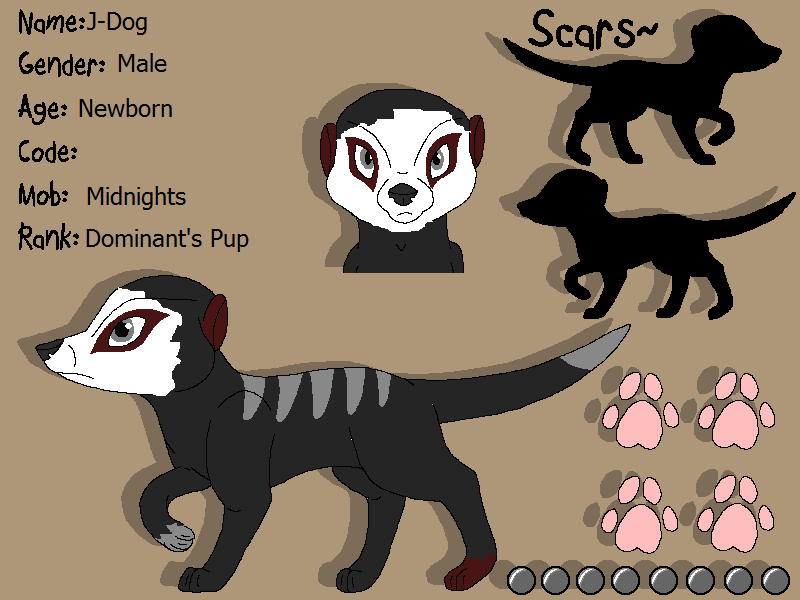 Stormy's Character Designs v2 J-dog10