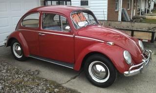 Le modèle 64 Beetle10