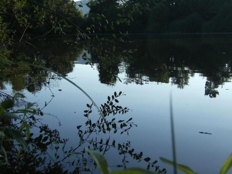 Petite pêche de journée Peche_29