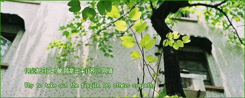 【推文】凤囚凰 Untitl10