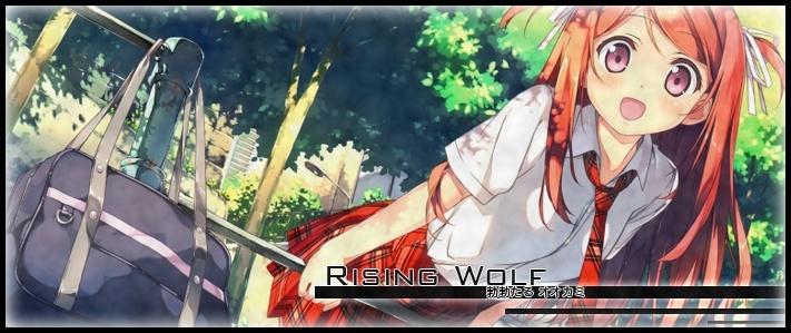 Rising Wolf T341010