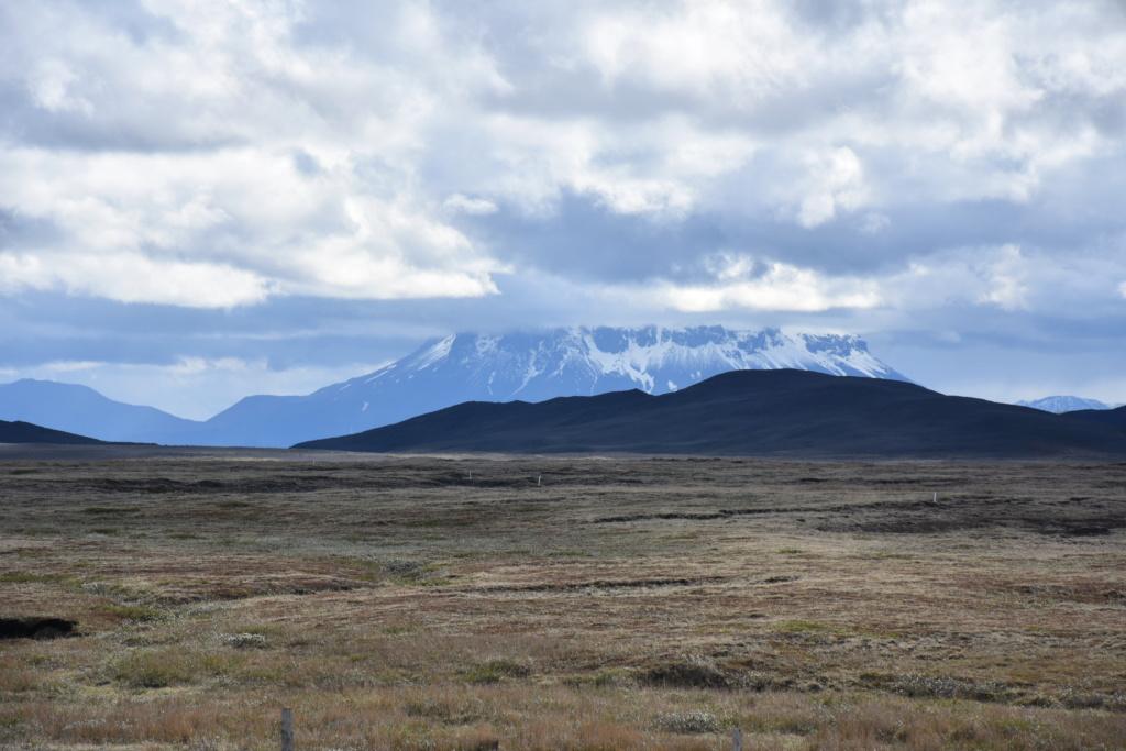 Camping Fjalladyrd  - Islande Dsc_3023