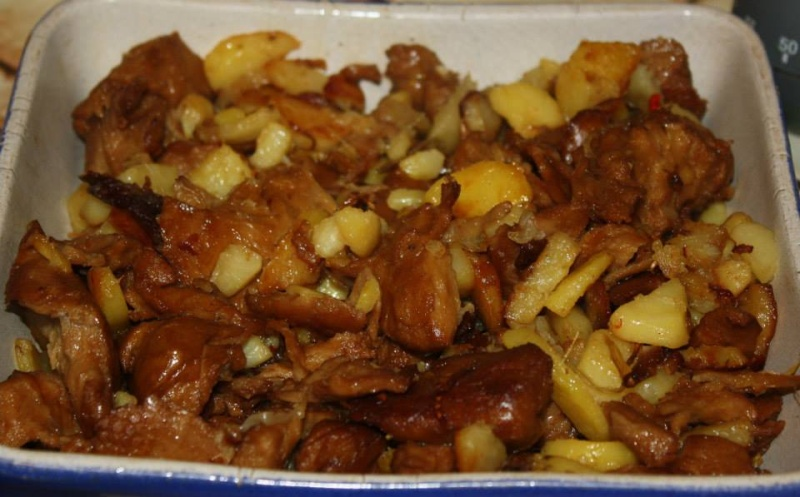 Canard - Vantastic Foods 10984310