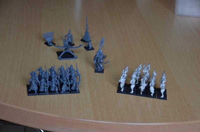Mes Haut Elfes défi Battle He13