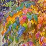 Золотая Осень 69956710