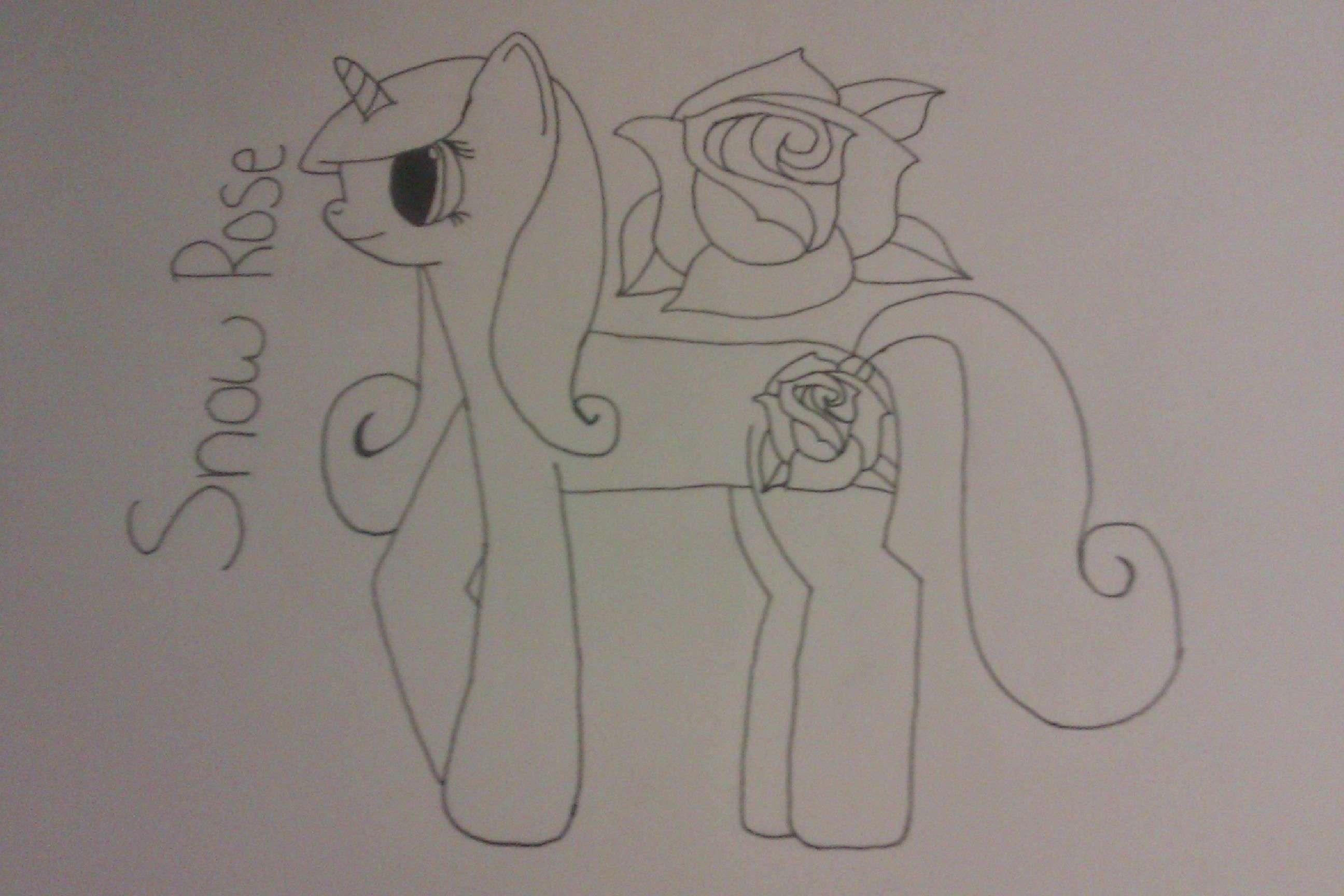 Snow Rose Snow_r11