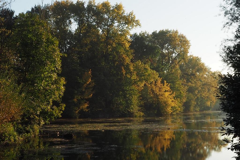 L'automne sur l'Isle 01611