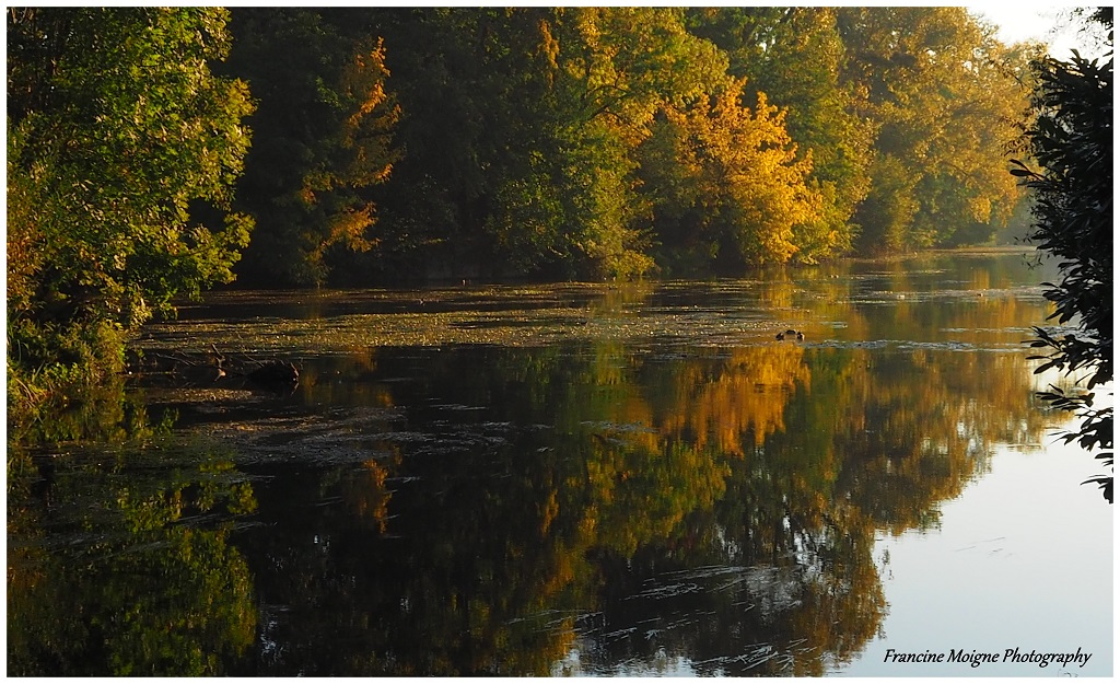 L'automne sur l'Isle 019_co10