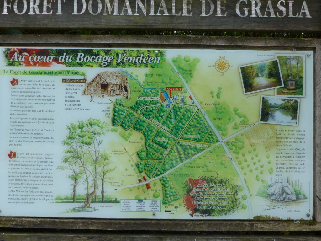 Sur les traces des guerres de Vendée et de la Chouannerie - Page 3 P1130112