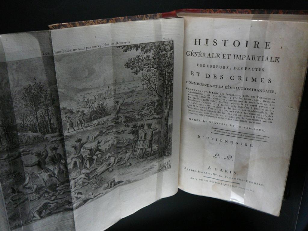 Sur les traces des guerres de Vendée et de la Chouannerie - Page 3 P1170319