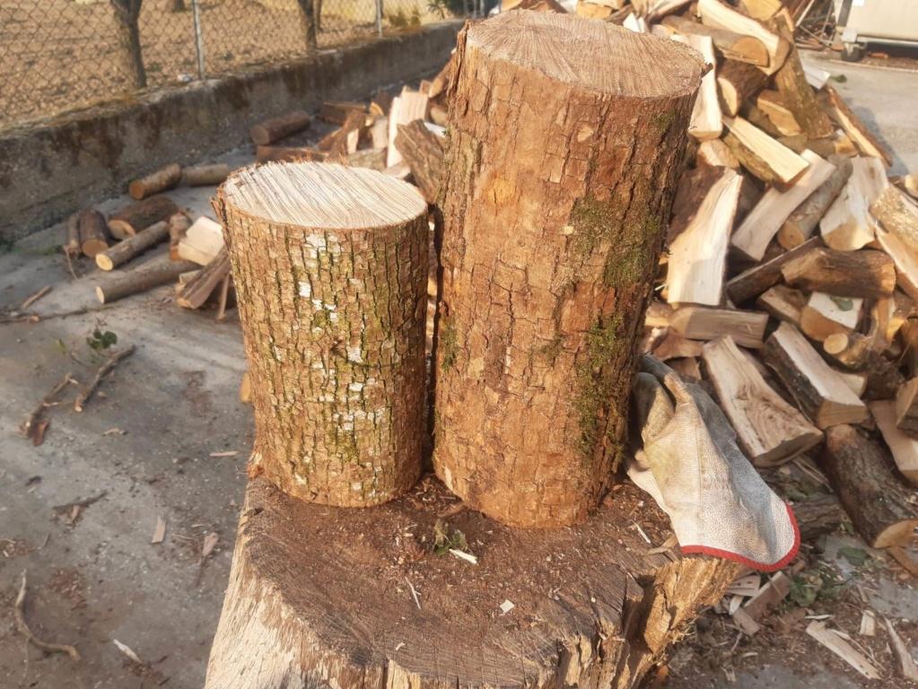 che legno è? Ciocco11