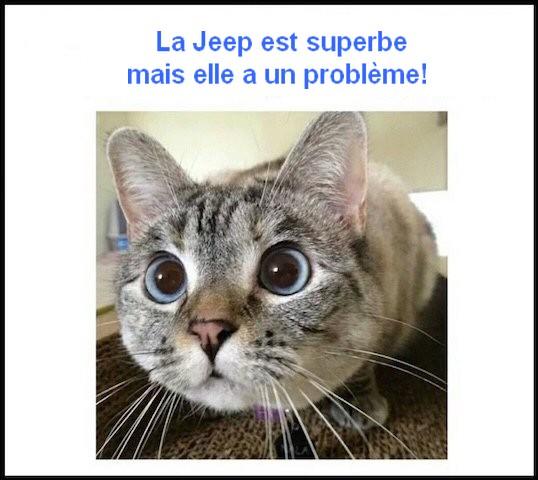 Jeep Willys - 1/8ème - Ed. Hachette - Construction par Glénans (Partie 1) - Page 39 Bd035410