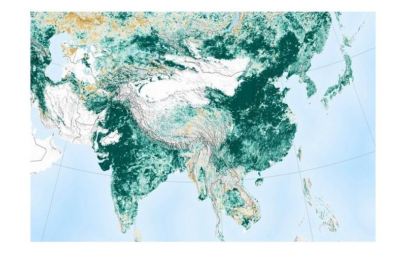 Grâce à la Chine, la planète bleue est plus verte qu'il y a vingt ans 166