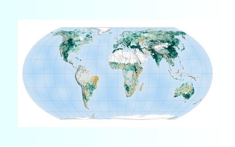 Grâce à la Chine, la planète bleue est plus verte qu'il y a vingt ans 168