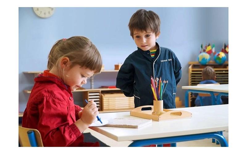 Quelles sont les raisons du succès de la pédagogie Montessori ? 442