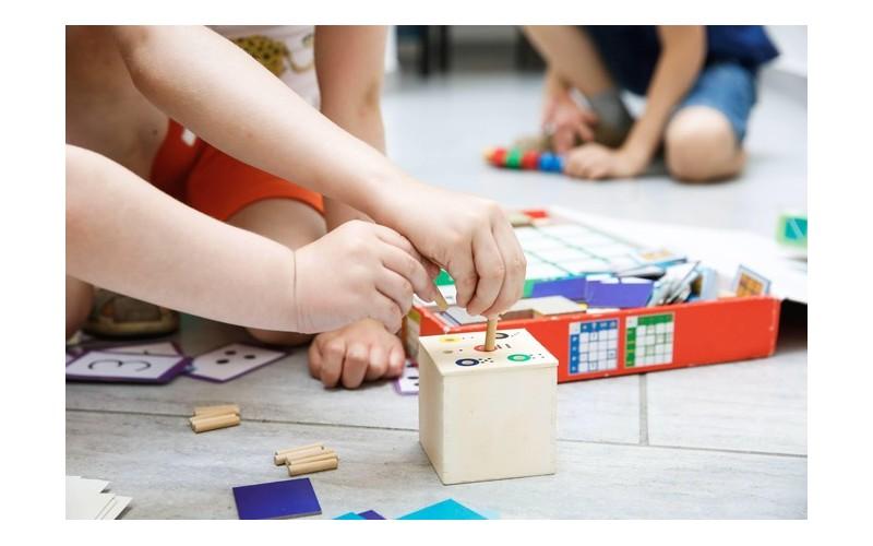 Quelles sont les raisons du succès de la pédagogie Montessori ? 443