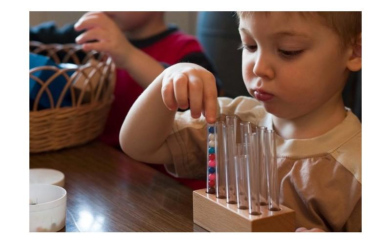 Quelles sont les raisons du succès de la pédagogie Montessori ? 444