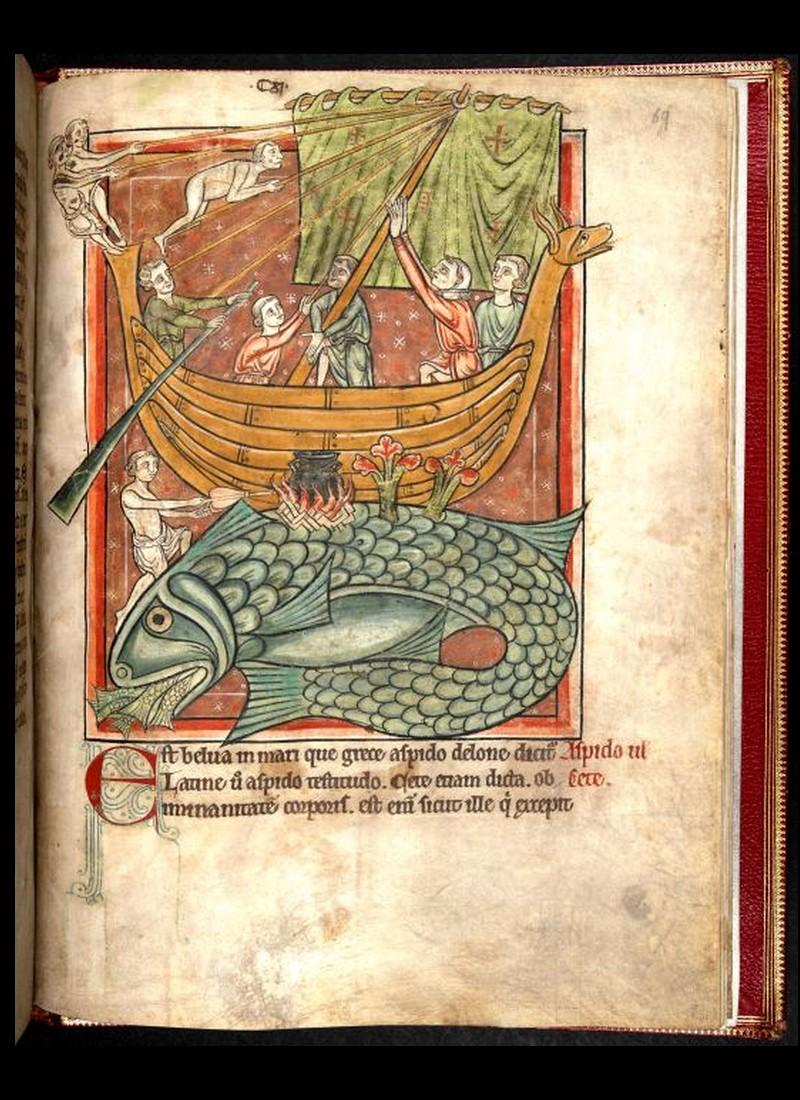 800 manuscrits médiévaux enluminés mis en ligne par la Bibliothèque nationale de France et la British Library D14