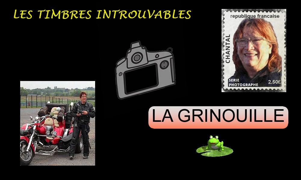 LES TIMBRES INTROUVABLES 1 Gr410