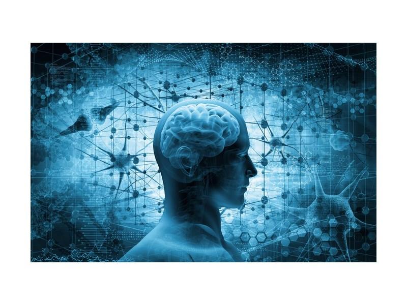 Que se passe-t-il dans le cerveau au moment de la mort ? Sans1166