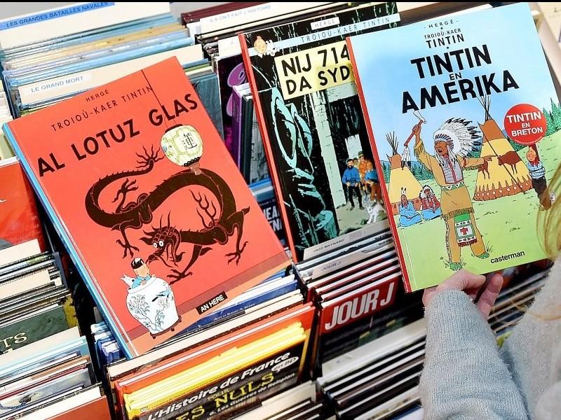 Comment se nomment les personnages de Tintin en breton ? Sans1313