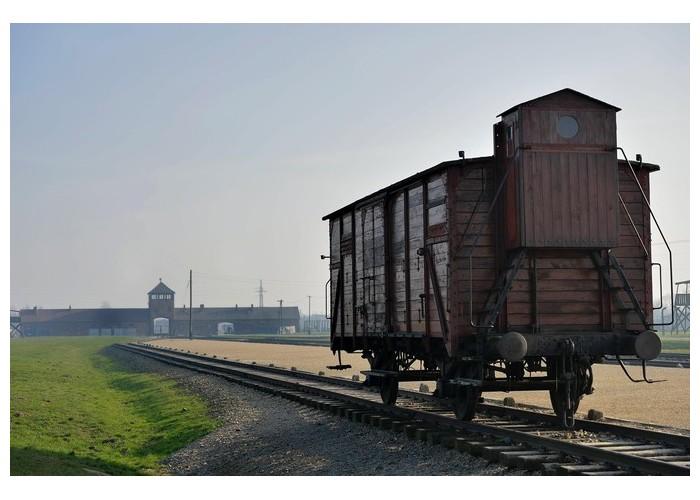 À Auschwitz, avec les derniers témoins français de l'horreur nazie Sans1869