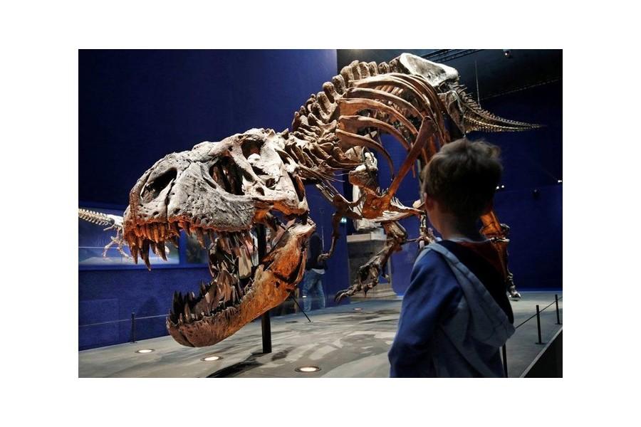 Allons-nous connaître le même sort que les dinosaures ? Sans1942