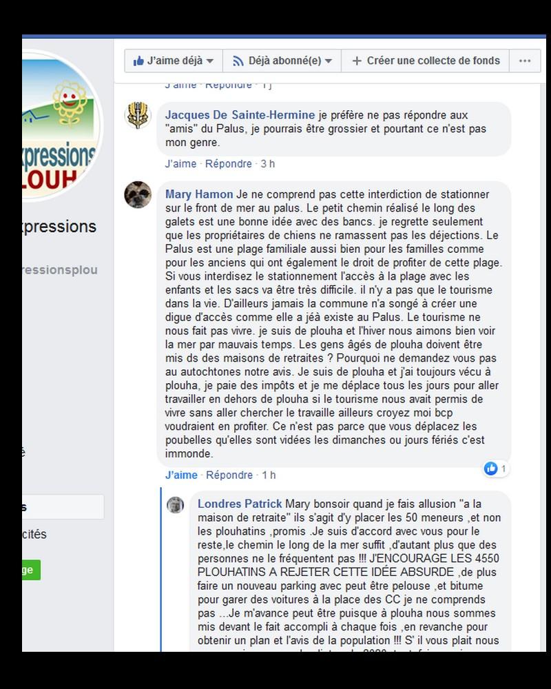 """""""L'association des Amis du Palus, Sans2020"""