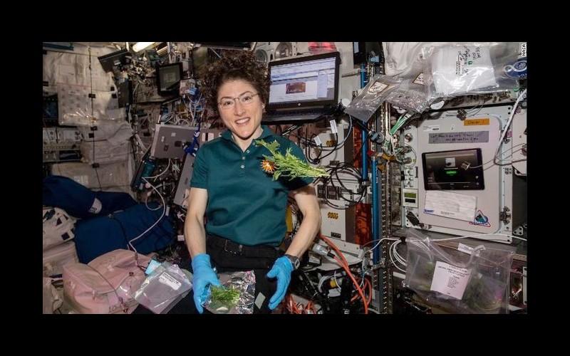 Qui est Christina Koch, l'astronaute qui a passé 328 jours dans l'espace ? Sans3712