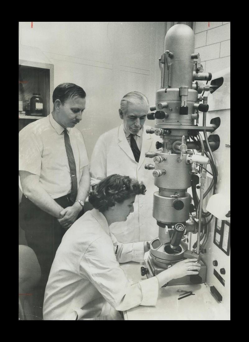 Qui est June Almeida, la chercheuse qui a découvert les coronavirus ? Sans4227