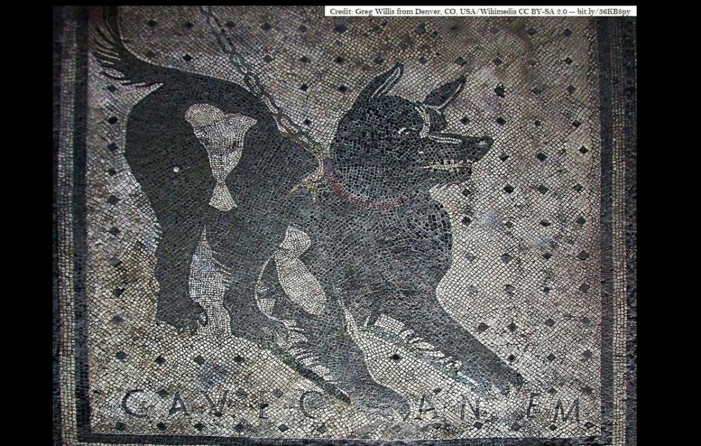 Le fameux panneau « Attention, chien méchant » Sans5157