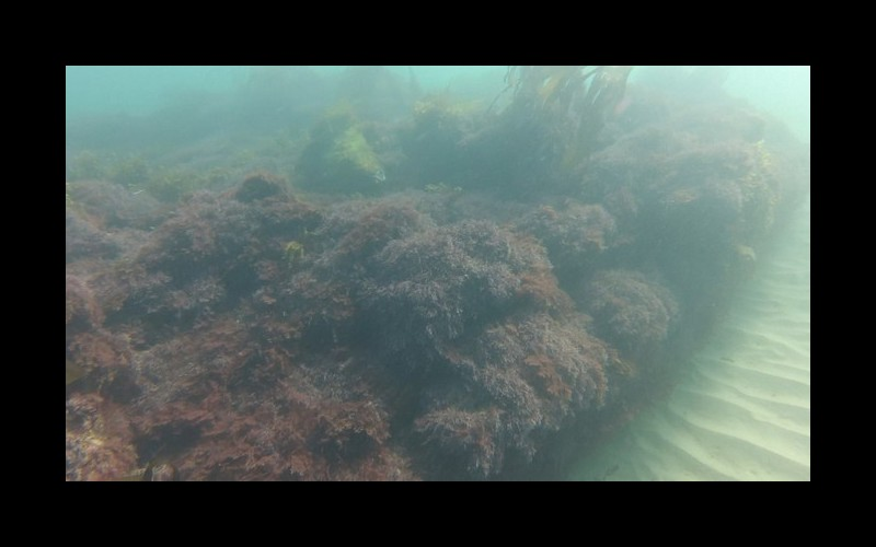 L'épave Stella-Maris de Binic livre ses secrets 133 ans après son naufrage en Vendée Sans5194