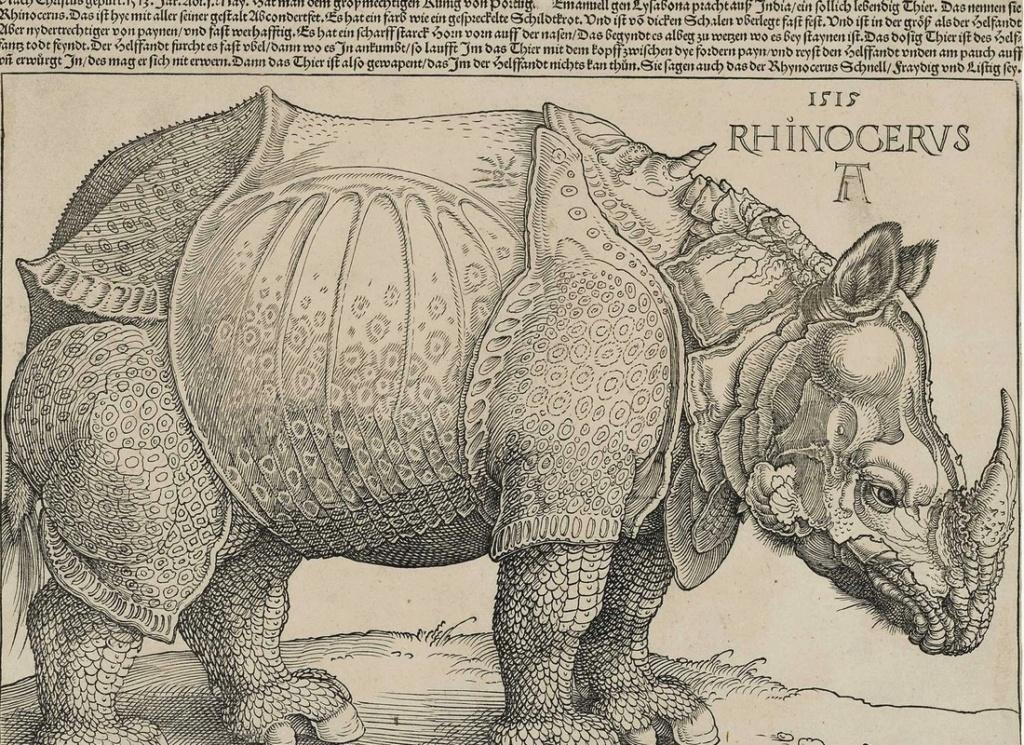 Cette gravure sur bois d'Albrecht Dürer Sans5437