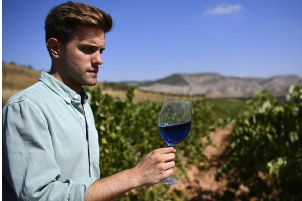 Le vin bleu, la boisson qui fait hurler les sommeliers Sans_548