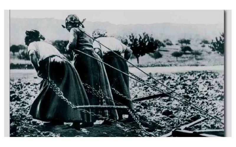 Centenaire de la Grande Guerre. L'autre guerre, celle des femmes restées en Bretagne Sans_878