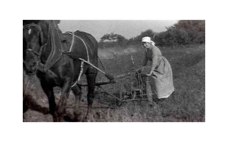 Centenaire de la Grande Guerre. L'autre guerre, celle des femmes restées en Bretagne Sans_879