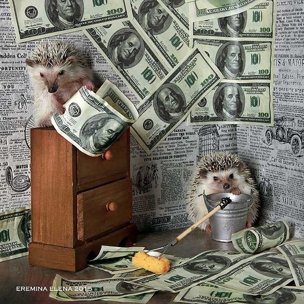 Деньги и Успех - Страница 2 Img_2010