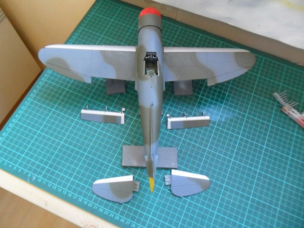 P-47M Thunderbolt du 62Sq du 56th Group  - Page 3 Sam_2083
