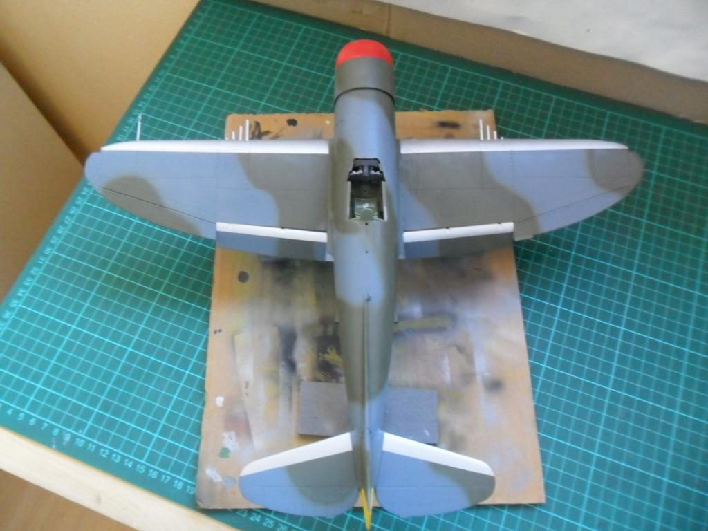 P-47M Thunderbolt du 62Sq du 56th Group  - Page 3 Sam_2084