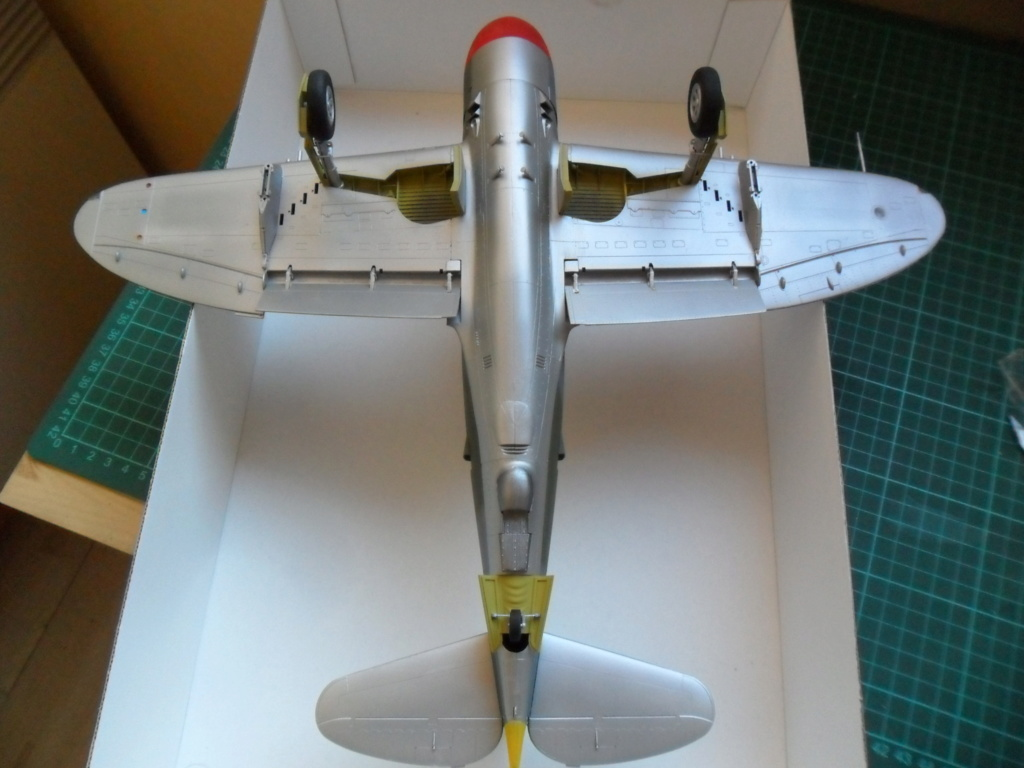 P-47M Thunderbolt du 62Sq du 56th Group  - Page 3 Sam_2085