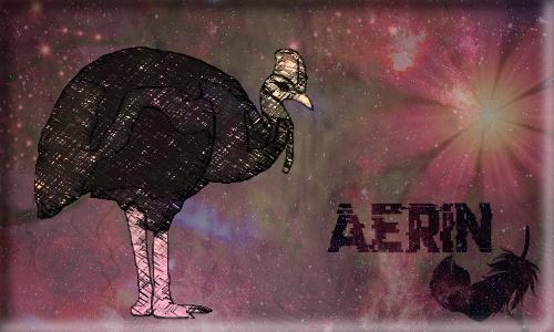Aerin Zeim' Finlok Aerin_10