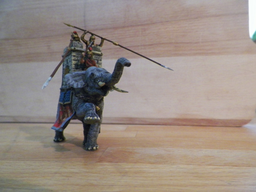 Éléphant Carthaginois et Indien 100_0410