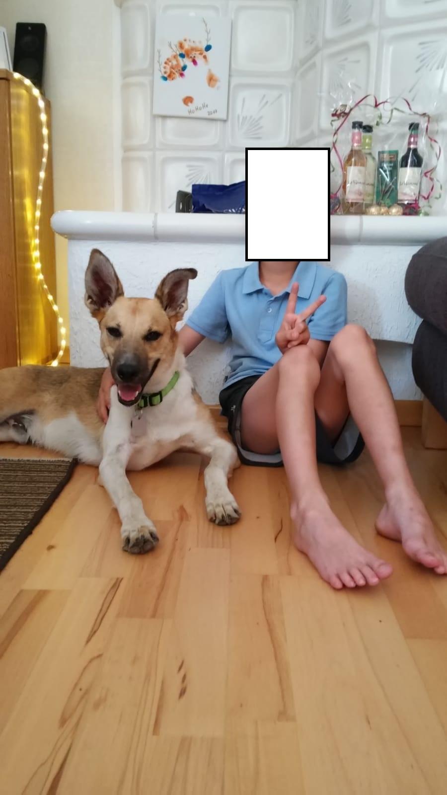 Max(well) hat seine Familie gefunden :-)  Max_un10